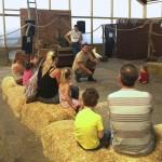 Hounslow Urban Farm animal encounter